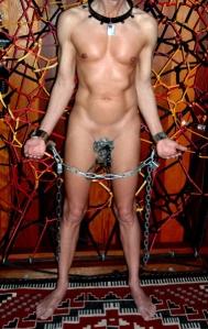 chastitybelt